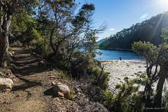 Denman's Cove (NettyA) Tags: 2017 3capestrack australia sonya7r tasmannationalpark tasmania tassie threecapestrack bushwalking hike bushwalkers denmanscove track trail path