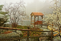 Foggy Spring Day (thetrick113) Tags: hudsonvalley sonyslta65v mohonkmountainhouse mohonk lakemohonk shawangunkmountains shawangunkridge shawangunk shawangunks gunks thegunks summerhouse rusticcarpentry rusticstructure railing fog weather spring2017 2017 spring shadblow serviceberry bloom white hdr dicot deciduous shrub tree boat