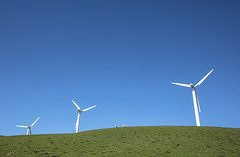 Sheep among the wind turbines (Jo Evans1 - Off and on for a while) Tags: wind farm turbines sheep grazing blue sky mynydd y gaer pencoed s wales