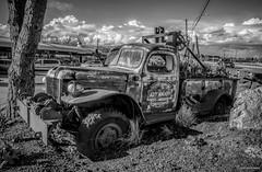 Dodge Power Wagon WM300 Pickup Truck ( Art Knapp Truck) (SonjaPetersonPh♡tography) Tags: antique artknappplantlandgardencentre chrysler wm300 artknapptruck dodgepowerwagonwm300pickuptruck pickuptruck rusty vintage old rust classictruck oldtruck nikond5200 nikon vehicle truck gardencentre store canada britishcolumbia southsurrey surrey