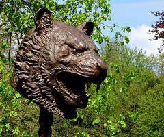 Tiger Zodiac Head (Lotties MUM) Tags: bronze zodiac tiger head wakefield weiwei