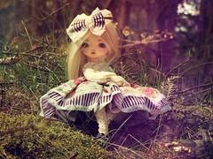 Hello :) (Nirmrill) Tags: dolls bjd leekeworld leekeworldashley leekeworldmia intheforest hellospring dollsphotography
