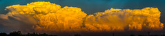 050212 - Building Nebraska Storm Cells (Pano) (NebraskaSC Photography) Tags: nebraskasc dalekaminski stormscape cloudscape landscape severeweather severewx nebraska nebraskathunderstorms nebraskastormchase weather nature awesomenature storm thunderstorm clouds cloudsday cloudsofstorms cloudwatching stormcloud daysky badweather weatherphotography photography photographic warning watch weatherspotter chase chasers newx wx weatherphotos weatherphoto sky magicsky extreme darksky darkskies darkclouds stormyday stormchasing stormchasers stormchase skywarn skytheme skychasers stormpics day orage tormenta light vivid watching dramatic outdoor cloud colour amazing beautiful