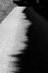 Electrodromogramme (cactus2016) Tags: abstrait blackandwhite noiretblanc route
