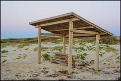 Sunrise at the beach (HasnMlk) Tags: d750 surise beach padreisland 1635mm texas skycolor