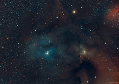 Rho Ophiuchi Cloud Complex (Martin_Heigan) Tags: dustandgas rhoophiuchi cloudcomplex darknebula antares hydrogen rgb astronomy astrophysics astrograph telescope refractor williamoptics star71 martin heigan astrophotography reflector celestron avx nebula deepsky dso space science physics canon 60da mhastrophoto april2017 southafrica southernskies southerhemisphere ic4603 ic4604 colorsofspace coloursofspace nebulae interstellardustandgasclouds astrometrydotnet:id=nova2063475 astrometrydotnet:status=solved οsco ρoph