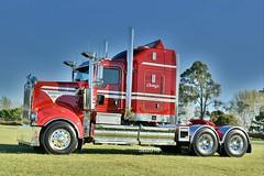 Calleija Kenworth T909 Classic (Scottyb28) Tags: kenworth truck trucks trucking highway haulage calleija t909 t909classic diesel loaded newcastle brisbane kenworthklassic