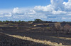 20170501-IMGP4335-3 (frontios) Tags: frontios scottbartlett outdoors devon woodbury common exmouth eastdevon fire burnt wood burned gorsefire scorch scorched countryside pentax k5 justpentax