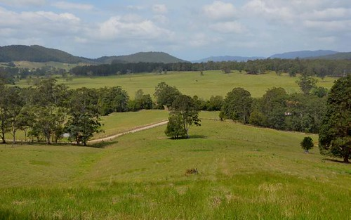 Lot 1 Pipeclay Road, Pipeclay NSW 2446