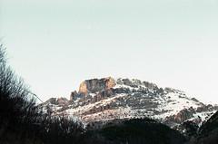 (Federica [C]) Tags: 50mm f14 film analog analogue nikonfm2 nikon 200iso fujifilm superia indie grunge vintage grain grana epsonv370 italy italian italia pellicola roll rullino softgrunge softfocus softlight filmisnotdead fadedblack faded analogcamera scanfromfilm vintagecamera tumblr 35mm 35mmfilm 35mmphotography filmcamera tumblrphotographer analogico mongioie mountain snow sky cielo landscape nature naturalillumination natura trees neve winter inverno cold sunset tramonto