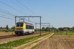 LINEAS HLE 1340  Lammeken (Tren di Cédrico) Tags: lineas blog nmbs sncb lammeken lokeren l59 1340 hle alstom cargo train trein waasland