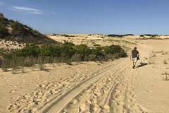 Jockey's Ridge State Park_5490 (newspaper_guy Mike Orazzi) Tags: photostream beach northcarolina outerbanks jockeysridgestatepark nagshead nc dunes dune sand iphone obx