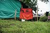 DSC_7811 (Diegomaxp) Tags: diegomaxp visita de estudiantes la universidad nacional colombia al departamento del tolima municipio icononzo una las zonas veredales transitorias normalización zvtn facultal medicina veterinaria y zootecnia