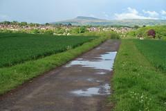 Puddly road (Badly Drawn Dad) Tags: gbr ludlow shropshire unitedkingdom ludford geo:lat=5236044697 geo:lon=271470667 titterstonecleehill geotagged