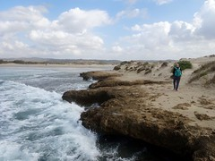 Dor HaBonim beach