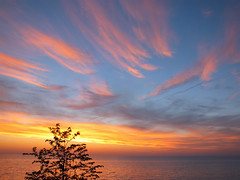2017-05-16 Day 136/365 (clarinetgirl) Tags: 3652017 0516 lakeerie sunset pinkclouds