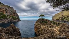 Cala de Sa Calobra I (Foto-Unlimited) Tags: balearen baum bucht cala de sa calobra europa felsen mallorca meer spanien wolken
