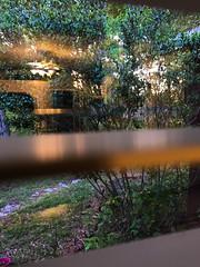 A Glance Outside