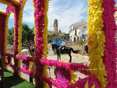 Día de San Isidro.Romería en Alameda(Málaga) (lameato feliz) Tags: carroza fiesta alameda romeríadesanisidroalameda torre caballo