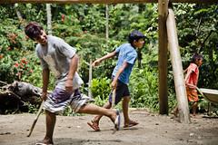Aldeia Guarani_Foto de AF Rodrigues_117 (AF Rodrigues) Tags: afrodrigues aldeiaguarani guarani paraty rj riodejaneiro brasil bemquerer br programaproíndio uerj aldeiaindígina povodafloresta populaçãotradicional índio indígina foratemer