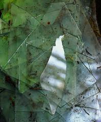 Broken Glass Velvia 50 5x4 º (CactusD) Tags: brokenglass broken glass abstract abstraction greenhouse glasshouse horticulture gardening landscape england botany nikon d800e fx texture uk unitedkingdom gb decay detail wabisabi wabi sabi textures united kingdom greatbritain great britain movements details macro velvia velvia50 fuji fujichrome fujifilm film 5x4 4x5 60mmf28afsmicro 60mm afs f28 micro digitized linhof technikardan tks45 s45 largeformat large format nikkor w210mmf56 210mm f56