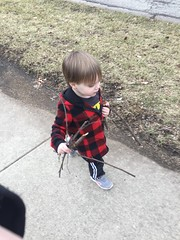 "Paul Carries Sticks on a Walk • <a style=""font-size:0.8em;"" href=""http://www.flickr.com/photos/109120354@N07/33722472863/"" target=""_blank"">View on Flickr</a>"