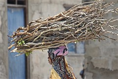 Perfect Balance (The Spirit of the World ( On and Off)) Tags: wood branches firewood girl woman local buildings candid streetscene everydaylife africa eastafrica zanzibar island indianocean