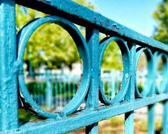 HFF ! (leapinlily (on vacation)) Tags: hff friday fencefriday chipped blue