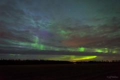 Cloudy substorm, Grassland, Alta [Explored] (WherezJeff) Tags: grassland alberta canada aurora auroraborealis northernlights g2 purple green arc