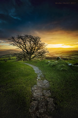 Brentor sunrise (Mark Frost :)) Tags: tree sun sunrise clouds sky grass stone red orange blue green tor dartmoor landscape photo canon eos