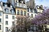Paris - le printemps