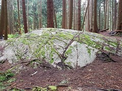 Big rock in the woods (walneylad) Tags: princesspark northvancouver britishcolumbia canada moss trees branches park parkland urbanforest forest rainforest woods woodland rock stone boulder spring april cloudy greysky view nature scenery green brown grey