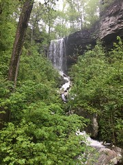 Wildcat Falls - after heavy rains (cliffordswoape) Tags: usa highway70 spring green persistence beauty rain waterfalls uppercumberland tennessee bonairmountain bonair whitecounty sparta wildcatfalls