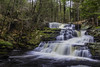 Stepped Waterfall (nhphoto1954) Tags: leecarvalho nature waterfall water trees landscape 1635mm canon1635mmf28liiusm 1635mmf28lii