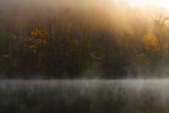 Golden morning at Mill Creek Lake (MarcusDC) Tags: naturalbridgestateresortpark millcreeklake morning fog explore352may52017