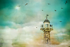 Whitby Lighthouse - East Cliff (OATH Photography by Alison Richards) Tags: whitbylighthouse whitby northyorkshire eastcliff whitbyharbour endeavourwharf whitbypier sea clouds seagulls yellow blue painterly creativephotography photography artphotography landscapephotography nature nikond750 nikonuser englandunitedkingdom