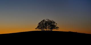 Embers of dusk