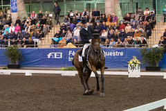 17429_Sydney_CDI_GPFS_0143.jpg (FranzVenhaus) Tags: athletes dressage australia equestrian riders horses ponies rug siec nsw sydney newsouthwales aus