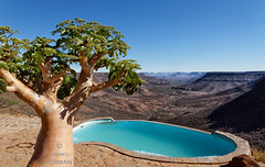 Swimming pool with a view (marko.erman) Tags: grootberg damaraland namibia africa klipriver plateau landscape pool pov view tree beautiful sony baobab