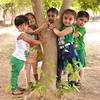 "Hug the Tree Activity • <a style=""font-size:0.8em;"" href=""https://www.flickr.com/photos/99996830@N03/34386198092/"" target=""_blank"">View on Flickr</a>"