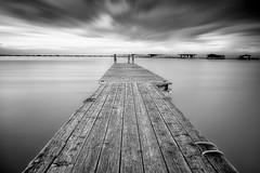 Crooked Solitude bw (Bernhard Sitzwohl) Tags: jetty water lake neusiedl outdoor burgenland landscape nature lee longexposure blur