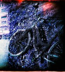 Kanalcykel (Holga 120 SF) (mmartinsson) Tags: negativescan bicycle holga120sf canal lomography mediumformat 6x6 lomochromepurple scan epsonperfectionv700 analoguephotography 120mm holga film malmö skånelän sverige se