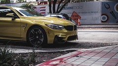 BMW M4 X MIAMI (Samuel k bry) Tags: bmw miami m4 downtown yellow bridge msport 2017 car low racing daily driven driver mperformance 335i 330i 325i 328i f82 facelift front photography lightroom gh4 m43 panasonic sigma 1835 f18 aperture
