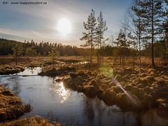 20170501105165 (koppomcolors) Tags: koppomcolors värmland varmland sweden sverige scandinavia