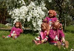 Kindergartenkinder ... (Kindergartenkinder) Tags: grugapark essen kindergartenkinder blüte baum garten blume park sanrike tivi annemoni margie frühling annette himstedt dolls