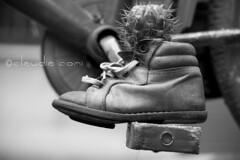 L'arte del (t)riciclo (cocciula) Tags: bw sardegna sardinia scarpina vasetto installazione piantagrassa riciclo triciclo santulussurgiu oristano