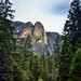 A View to Sentinel Rock through the Trees (Yosemite National Park)