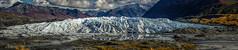 Matanuska Glacier (Traylor Photography) Tags: ancient wideangle daytripping recede glennhighway melting palmer panorama alaska matanuskaglacier ice