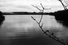 Cronfa ddŵr Wysg (Rhisiart Hincks) Tags: usk wysg bw duagwyn achuimrigh anbhreatainbheag kembre cymru wales landscape tirlun 5mai2013 mirlec'hdour reservoir urbiltoki lochtasgaidh