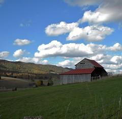 Bluegrass Vally (cscott_va.) Tags: barn virginia highland county 2016 explore